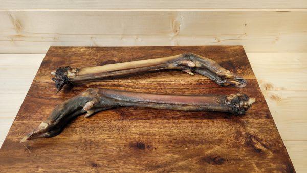 Roe Deer Legs