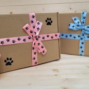 The Birthday Box 1